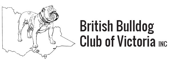 british bulldog club of victoria